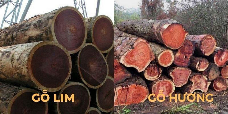 So sánh gỗ lim và gỗ hương gỗ nào tốt và bền hơn?